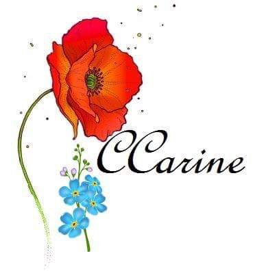 🌸 Welcome to CCarine 🌸
